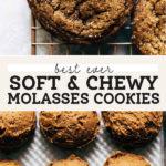molasses cookies pinterest graphic