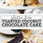 gluten free chocolate coconut cake pinterest