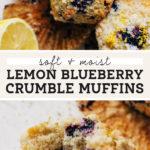 lemon blueberry muffins pinterest
