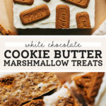 cookie butter bars pinterest graphic