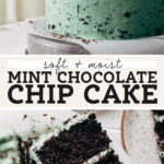 mint chocolate chip cake pinterest graphic