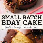small birthday cake pinterest